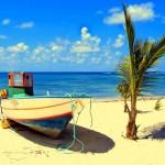Playa en la Isla Guadalupe