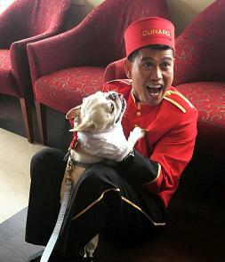 Perro a bordo