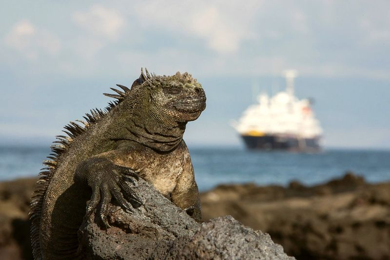 Silversea-Galápagos-2