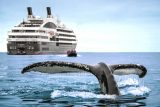 National-Geographic-Ponant
