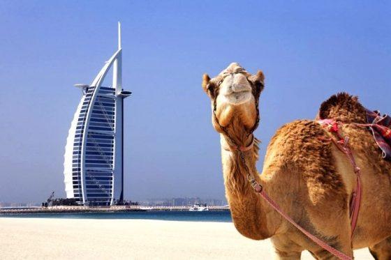 Leyendas de Arabia 1